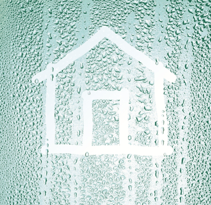 condensation house